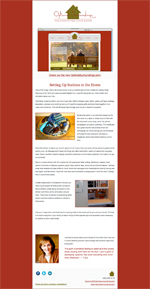 April 2011 Newsletter